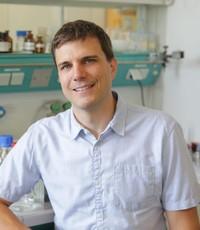 Prof. Matthias Gehringer
